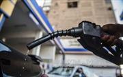 Giá dầu thế giới tuần qua giảm 0,3-0,4%
