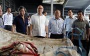 Bí thư Thành ủy TP Hồ Chí Minh khảo sát đề án xây dựng Nhà máy điện - rác Gò Cát