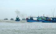 Phản đối mạnh mẽ hành vi sử dụng vũ lực đối với ngư dân Việt Nam