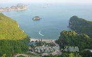 Xây dựng Cát Bà theo mô hình đảo sinh thái, thông minh