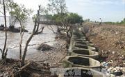 Trên 32 tỷ đồng thi công kè bảo vệ đê biển Gò Công