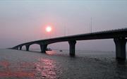 Ngắm độ hoành tráng của cầu vượt biển dài nhất Việt Nam