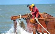 Khai quật tàu cổ đắm tại Dung Quất, Quảng Ngãi