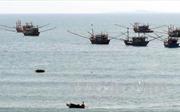 Quảng Nam: Tình trạng ngư dân vi phạm chủ quyền vùng biển nước ngoài giảm