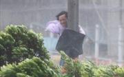 Người dân Hong Kong, Macau gồng mình trong bão Hato