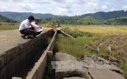 Hệ thống đê bao chống lũ ở Đắk Lắk bị sạt lở