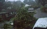 Bão Maria sắp đổ bộ, người dân Puerto Rico phải 'sơ tán hoặc là chết'