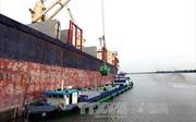 Bangladesh mời thầu quốc tế nhập khẩu 50.000 tấn gạo đồ Non-Basmati
