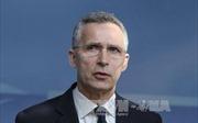 NATO ủng hộ triển khai lực lượng gìn giữ hòa bình tại Đông Ukraine