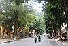Những hàng cây xanh quyến rũ của Hà Thành