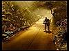 Những bức ảnh tuyệt đẹp của Rarindra Prakarsa