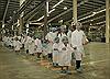 Vinamilk tổ chức cho con nhân viên khám phá siêu nhà máy sữa