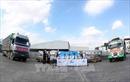 Tiếp nhận hàng viện trợ của Nhật Bản cho các tỉnh bị thiên tai