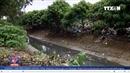 Công trình xử lý nước thải tiền tỷ bỏ hoang ở Hà Nội