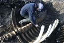 Tìm thấy bộ xương 'quái vật biển' không đầu dài 6 mét