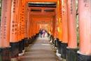 Chiêm ngưỡng ngôi đền nghìn cổng ở Nhật Bản