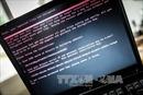 Tin tặc tấn công hệ thống máy tính của chính quyền thành phố Atlanta