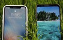 Rò rỉ hình ảnh nghi là 'ngôi sao' mới của Samsung, màn hình lớn hơn iPhone X