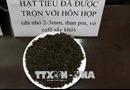Chưa phát hiện hồ tiêu 'nhuộm pin' tuồn ra thị trường Bình Phước