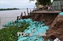Đồng Tháp: Nhiều biện pháp phòng chống sạt lở bờ sông Tiền