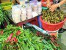 Sức mua tăng cao trong ngày Tết Đoan Ngọ tại TP Hồ Chí Minh