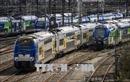 Pháp: Sinh ra trên tàu hỏa, em bé được miễn phí 25 năm đi tàu