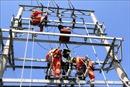 Quảng Ninh khuyến cáo khách du lịch hạn chế ra đảo Cô Tô trong ngày mất điện