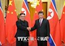 Liên minh đặc biệt Trung - Triều