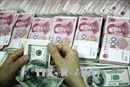 Đồng NDT chạm mức thấp nhất 1 năm so với đồng USD