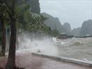Huyện đảo Bạch Long Vĩ đã có gió cấp 6, cấp 7 và sóng lớn