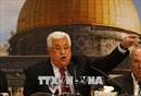 Palestine chỉ trích Luật Quốc gia dân tộc Do Thái của Israel