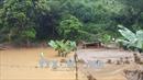 Gần 400 công trình thủy lợi tại Yên Bái được khắc phục sau mưa lũ