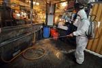 Trung Quốc mất 1 tỷ NDT mỗi ngày vì cúm H7N9