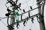 Cảnh báo sự cố lưới điện do thả diều