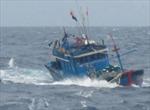 Tàu cá cùng 6 thuyền viên gặp nạn trên biển