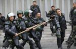 Lại xảy ra tấn công cảnh sát tại Tân Cương