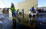 Dầu tràn ngập gối ở Los Angeles, Mỹ
