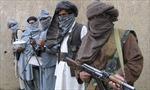 Afghanistan bắt thủ lĩnh chủ chốt của Taliban