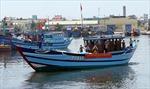 Tàu cá bám biển khai thác, bảo vệ chủ quyền