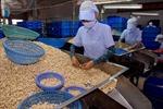 Xuất khẩu nông, lâm, thủy sản đạt 12 tỷ USD
