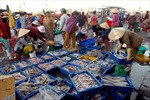 Định hướng Chiến lược biển Việt Nam đến năm 2020
