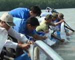 Thả 30.000 con tôm, cua tại Khu Ramsar