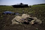 Hàng trăm binh sĩ Ukraine thiệt mạng tại Krasny Liman?