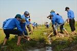 Ra quân chiến dịch thanh niên tình nguyện hè