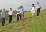 Nứt dọc ngang cơ đê sông Luộc tại Hưng Yên