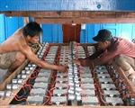 Tiếp dầu cho tàu cá trên biển