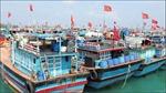 Bình Định kêu gọi tàu thuyền trú ẩn