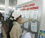 Nghệ An: Người dân không màng xuất khẩu lao động miễn phí
