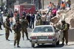 Israel bắt giữ Chủ tịch Hội đồng lập pháp Palestine