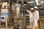 Gazprom và PetroVietnam thảo luận phát triển nhà máy lọc dầu Dung Quất